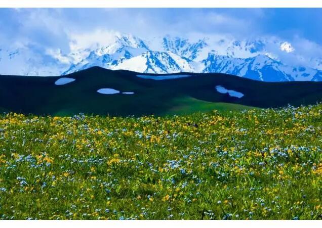 坐标:新疆塔城裕民县的巴尔鲁克山