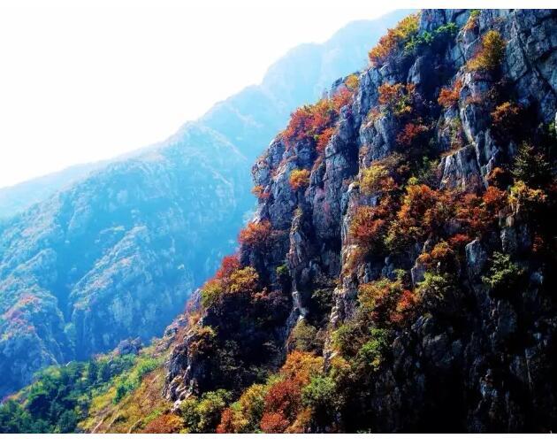 黄泛区旅游景点